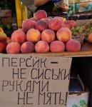 Персики не сиськи.jpg